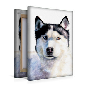 Premium Textil-Leinwand 30 cm x 45 cm hoch Husky Blue