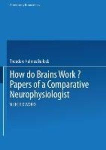 How do Brains Work?