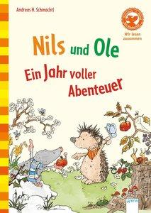 Nils und Ole. Ein Jahr voller Abenteuer