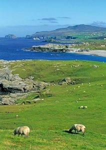 Irland - von Antrim bis Dingle (Posterbuch DIN A4 hoch)