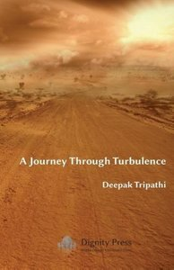 A Journey Through Turbulence