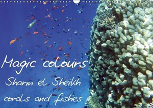 Magic colours Sharm el Sheikh corals and fishes (Wall Calendar 2