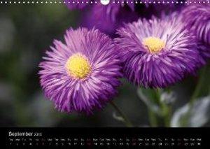 Summer Flowers (Wall Calendar 2015 DIN A3 Landscape)