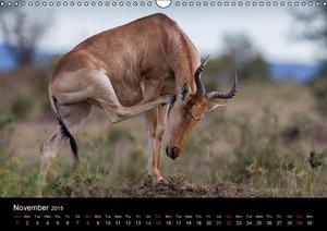 Kenyan Wildlife (Wall Calendar 2015 DIN A3 Landscape)
