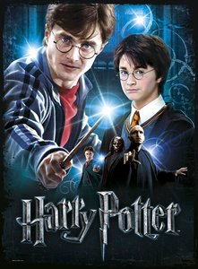 Wrebbit 3D(TM) Harry Potter Poster Puzzle HARRY POTTER 500 Teile
