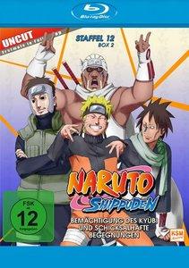 Naruto Shippuden - Staffel 12, Box 2: Folge 481-495