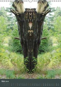 Spiegelwelten - Botschaften der Naturwesen (Wandkalender 2016 DI