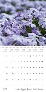spring - the painter (Wall Calendar 2015 300 &times 300 mm Squar