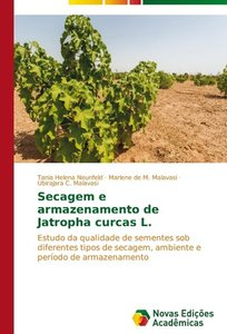 Secagem e armazenamento de Jatropha curcas L.