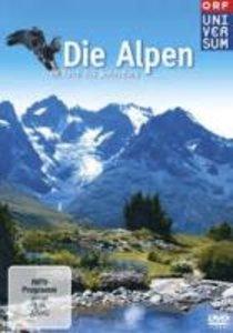 Die Alpen-Im Reich des Steinadlers (Ama)