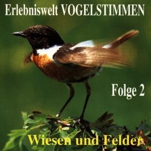 Erlebniswelt Vogelstimmen Vol.2