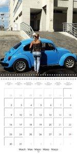 Lowis, H: Cuba's Beetles