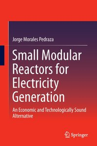 Small Modular Reactors for Electricity Generation