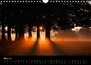 Deer in the Mist (Wall Calendar 2015 DIN A4 Landscape)