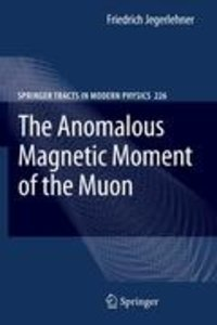 The Anomalous Magnetic Moment of the Muon