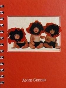 Anne Geddes Adressbuch (Poppies)