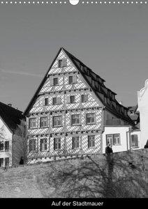 Grüße aus Ulm (Posterbuch DIN A3 hoch)