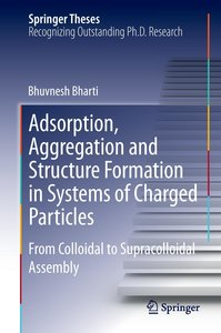 Adsorption, Aggregation and Structure Formation in Systems of Ch