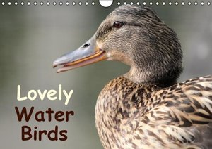 Lovely Water Birds (Wall Calendar 2015 DIN A4 Landscape)