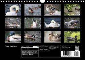 Lovely Water Birds (Wall Calendar 2015 DIN A4 Landscape)
