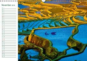 Gepflanzte Linien: Chinas Reisfelder von oben (Wandkalender 2016