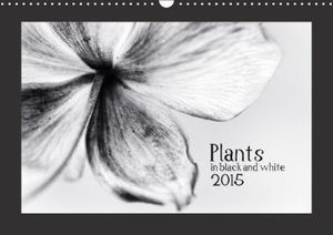 Plants in black and white / UK-Version (Wall Calendar 2015 DIN A