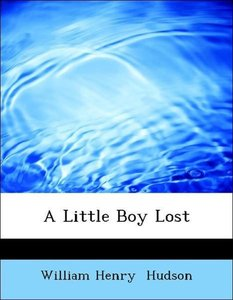 A Little Boy Lost