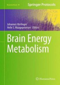 Brain Energy Metabolism