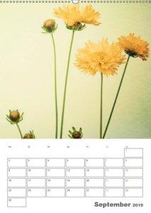 Blumige Fotomalerei (Wandkalender 2019 DIN A2 hoch)