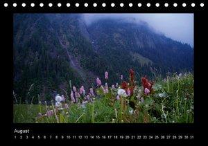 Surselva - Graubünden (Tischkalender immerwährend DIN A5 quer)