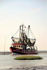 Premium Textil-Leinwand 50 cm x 75 cm hoch Krabbenkutter - DOR.