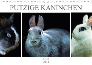 Putzige Kaninchen - Artwork