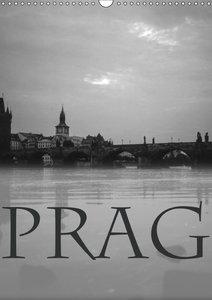 Prag - Praha - Prague (Wandkalender 2019 DIN A3 hoch)