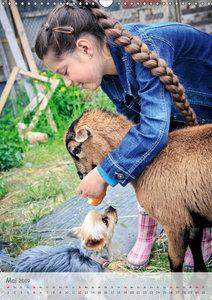 Kinder und Haustiere - wahre Freundschaft (Wandkalender 2019 DIN