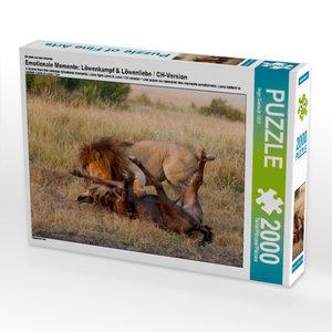 Ein Motiv aus dem Kalender Emotionale Momente: Löwenkampf & Löwe