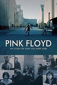 The Story Of Wish You Were Here (DVD)