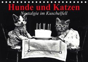 Hunde und Katzen - Nostalgie im Kuschelfell