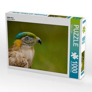 Adler-Ara 1000 Teile Puzzle quer