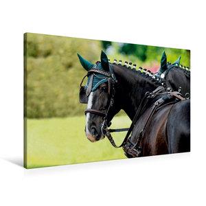 Premium Textil-Leinwand 90 cm x 60 cm quer Herrlicher Typ: Ulan