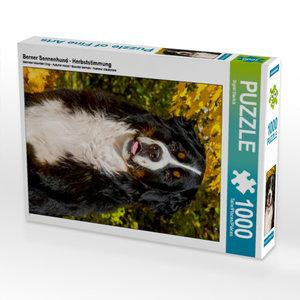 Berner Sennenhund - Herbststimmung 1000 Teile Puzzle hoch