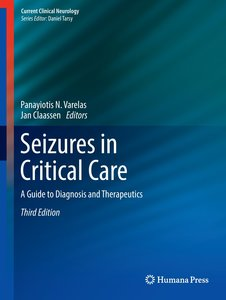 Seizures in Critical Care