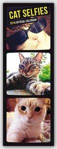 Cat Selfies - Katzen-Selfies 2018