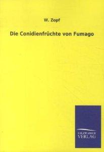 Die Conidienfrüchte von Fumago