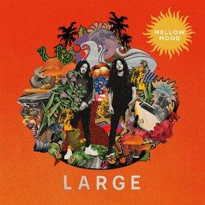 Large (Black Vinyl)