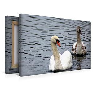 Premium Textil-Leinwand 45 cm x 30 cm quer Vater und Sohn