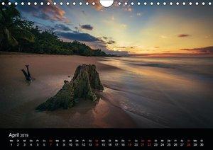 West Indies - Traumziel Karibik (Wandkalender 2019 DIN A4 quer)