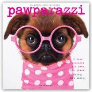 Pawparazzi 2018 - 16-Monatskalender