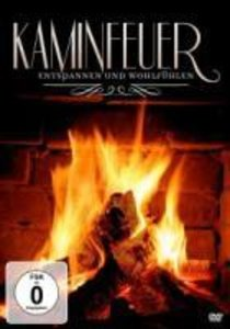 Kaminfeuer-Entspannen und Wohlfühlen