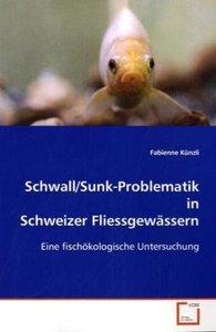 Schwall/Sunk-Problematik in Schweizer Fliessgewässern