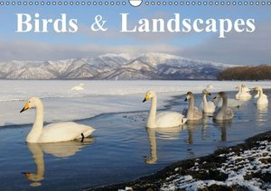 Birds & Landscapes / UK-Version (Wall Calendar 2015 DIN A3 Lands
